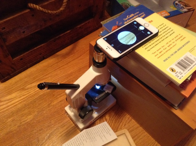 A simple stand held the iPhone just a fraction of an inch above the microscope to avoid getting jostled